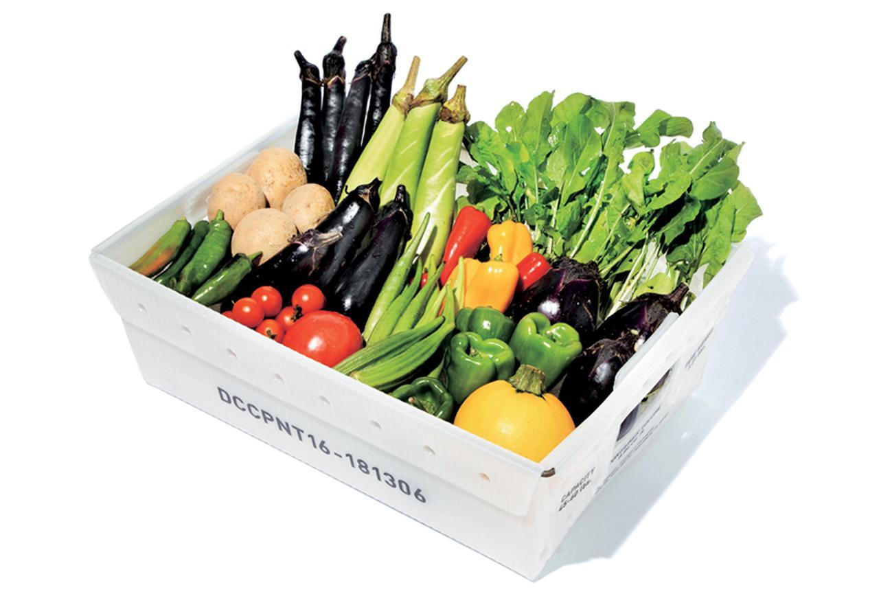 達人が教える「オーガニック野菜デリバリー4選」  [FRaU]