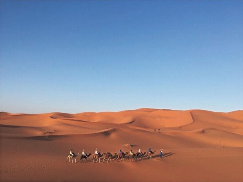 """砂と空のシンプルな世界 サハラ砂漠は """"地球"""" を 感じられるダイナミックな場所"""