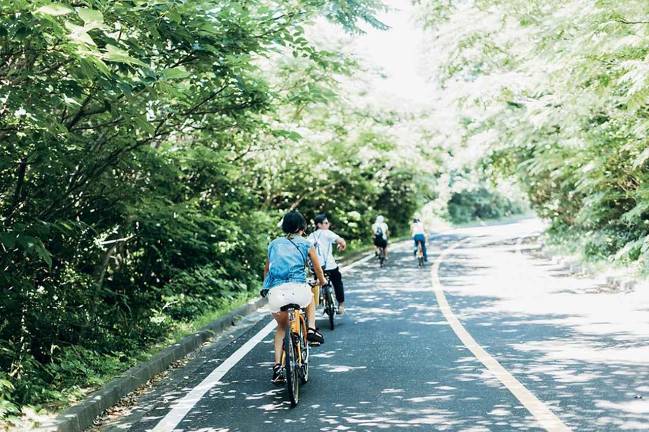 島の風が気持ちいい! 楽チンな電動自転車【レンタサイクル】