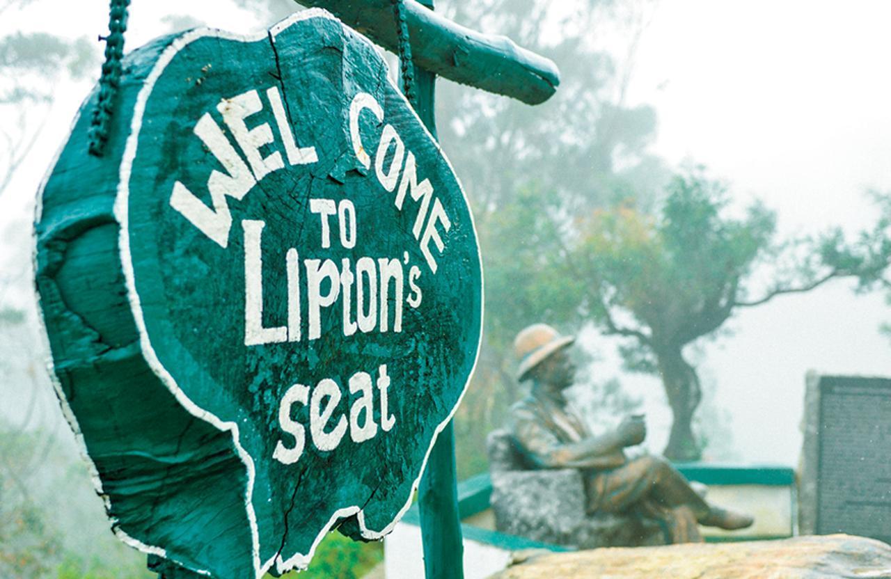 「リプトン」創始者、 サー・トーマス・リプトンのお気に入り