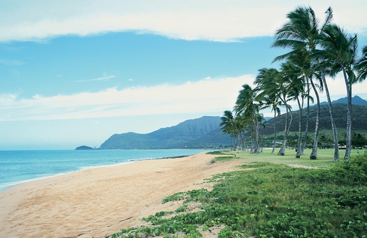 ワイキキから少し足を延ばして、ローカルビーチでゆったり [FRaU]
